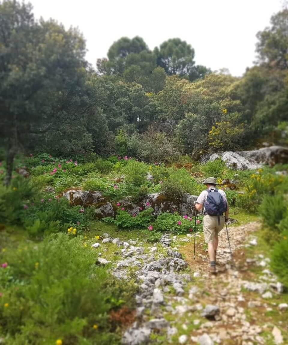 Sierra Grazalema Walking
