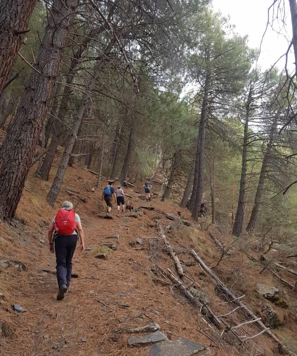 Self guided Sierra Nevada